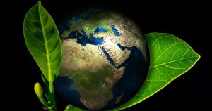 Ecological cleaning tips for a healthier environment